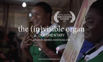 the invisible organ